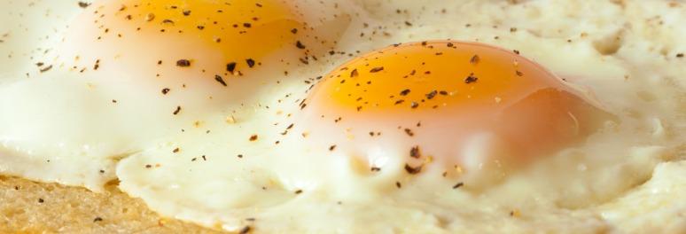 Harvest Hills Eggs 2-5