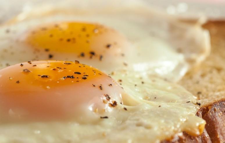 Harvest Hills Eggs 2-6