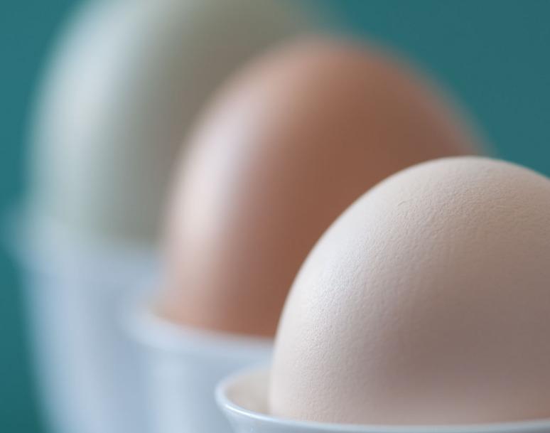 Harvest Hills eggs 5-4