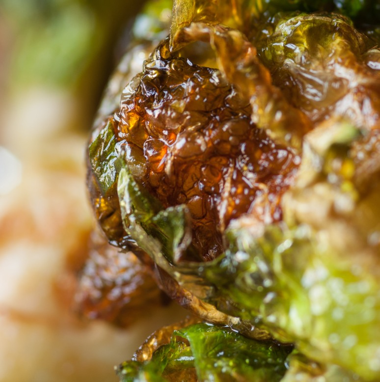 brussels sprout-4