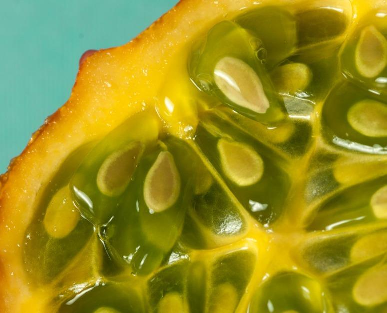 seeds 2-2