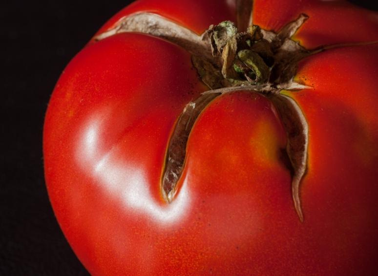 tomato light 5-7