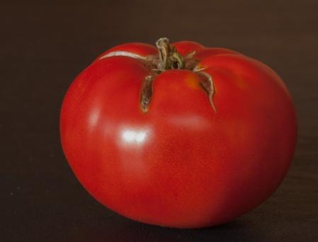 tomato light 6-2
