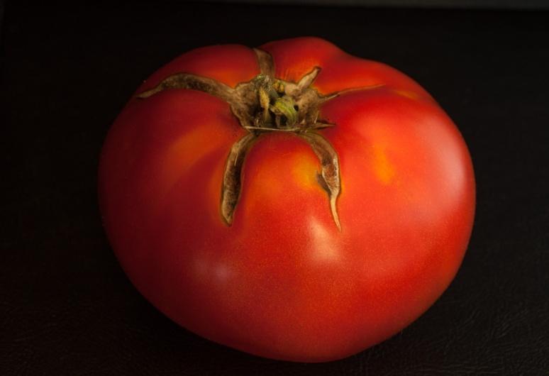 tomato9