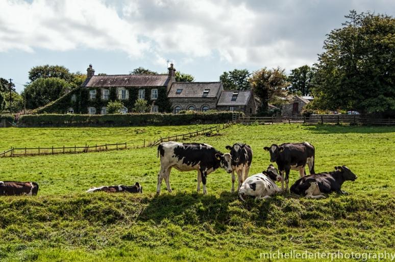 Ireland-bantry 3